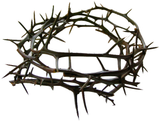 how to make a crown of thorns wreath